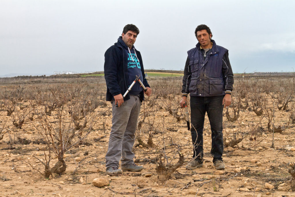 wine-workers_vzw